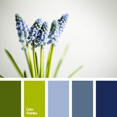 airy dark blue, apple-green, Blue Color Palettes, color combination, color of asparagus, color of dark blue steel, color of greenery, dark blue color, dark-blue, gray dark blue, green, light green, pale cornflower blue color, selection of pastel tones.