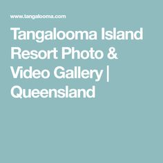 See some of the best photos & videos of Tangalooma Island Resort, on Queensland's Moreton Island, taken by professional photographers and guests Australia 2018, Island Resort, Cool Photos, Photo And Video, Gallery, Roof Rack