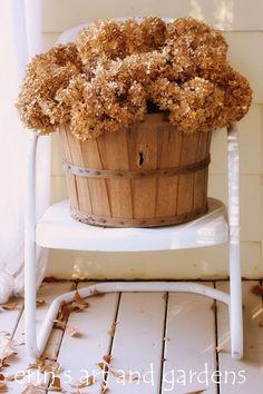 Dried hydrangea in basket on vintage metal chair