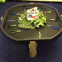 Rosemary, tomato leaves, sage and lavender to practice scissor skills. (I like the table too... wonder how I could make one?!)