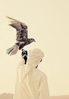 Arab Swag- One of the main reasons I want an Arabian husband. He's got the 'Arab Swag' . . . and hawks too!