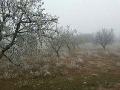 Paisaje frío y nublado en Calanda