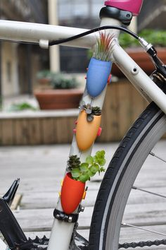 Tiny planters for your bike - mobile garden. Interesting idea!