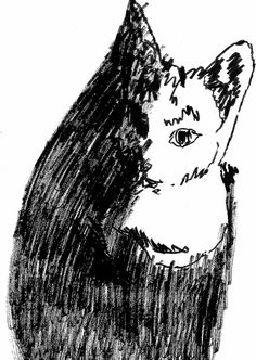 (c) Tony Ridgway Cat Sketch, Sketches, Illustrations, Cats, Drawings, Gatos, Cat Doodle, Kitty Cats, Illustration