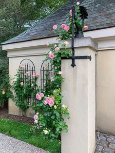 Over the Moon About Roses - Private Newport Iron Trellis, Eden Rose, Gladiolus Bulbs, Rose Cuttings, Rose Garden Design, Garden Art, Garden Tips, Dream Garden, Garden Ideas