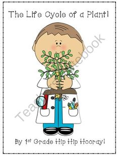Plant...Life Cycle Freebie from First Grade Hip Hip Hooray on TeachersNotebook.com -  (8 pages)  - Sequencing, writing, word work!