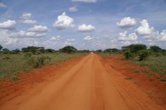 Stavo east park Kenia