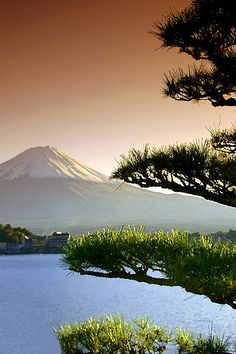 Mt Fuji, Japan #mountains