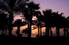 Sunset captured near Atlantis, Dubai