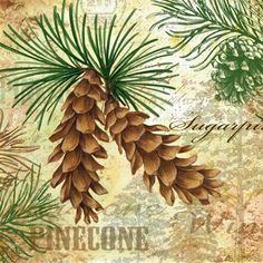 Pinecone Glory Twins by Elena Vladykina | Ruth Levison Design