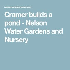 Cramer builds a pond - Nelson Water Gardens and Nursery Above Ground Pond, Container Water Gardens, Building A Pond, Small Waterfall, Garden Nursery, Pond Ideas, Backyard, Koi, House Ideas