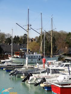 Proche de notre gite en normandie st val ry en caux - Port de plaisance saint valery en caux ...
