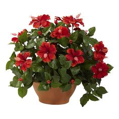 nearly natural Potted Hibiscus Plant, Green