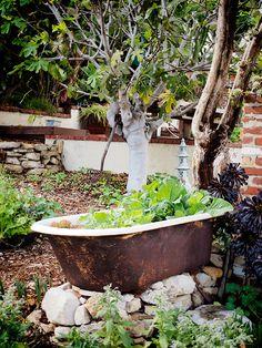 The No-Dig Vegetable Garden | Garden Betty