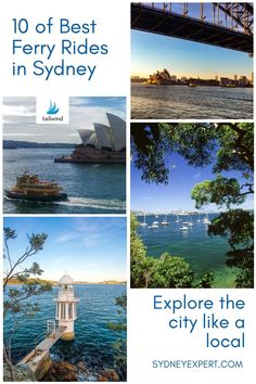 Australia Travel Guide, Visit Australia, Queensland Australia, Australia Day, Western Australia, New Zealand Itinerary, New Zealand Travel, Fiji Travel, Travel Tips