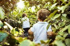 Children Walking In Woods stock photo 524168126 | iStock