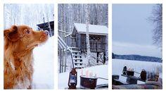 Ripaus unelmaa Puttipajalta   #puttipaja #kynttilä #kotimainenkynttilä #kruunukynttilä #tunnelma #talviretki #yksityiskohtia #nuotio #koira #puumaja