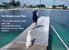 Diet & Exercise Tips to Help Your Dog Achieve and Maintain Their #PerfectWeight | Woof Woof Mama
