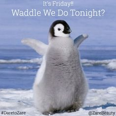 """It's #Friday Waddle You Beauties Do #Tonight ? 