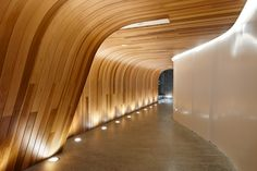 Corridor - wall to ceiling + light