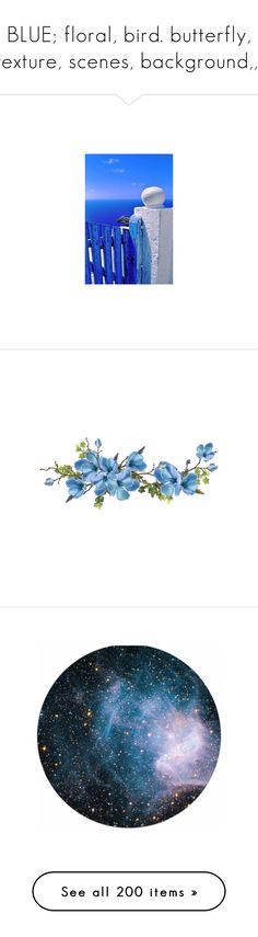 """""""BLUE; floral, bird. butterfly, texture, scenes, background,,,"""" by judymjohnson ❤ liked on Polyvore featuring flowers, backgrounds, fillers, plants, effects, quotes, phrase, saying, text and texture"""