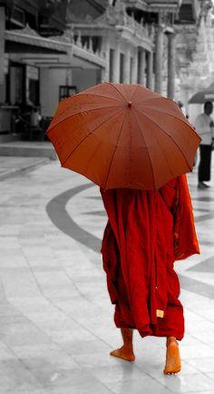 Myanmar - It's Raining Monks