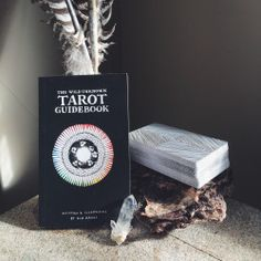 """""""I wanted the imagery to speak to a world of wild nature & mystery… a place where the darks are truly dark & the lights are bright & expansive."""" - Kim Krans, The Wild Unknown Tarot Guidebook, pg. 3"""