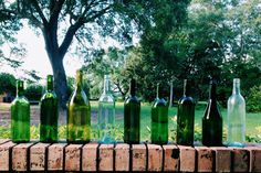 recycled wine bottles turned vases