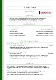 Lovely Resume Format Template 2017