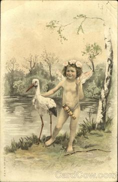 Stork and Cupid Girl Babies