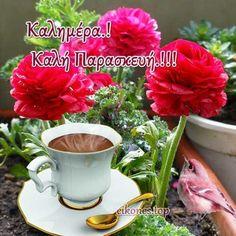 Mugs, Tableware, Plants, Greek, Stickers, Google, Dinnerware, Tumblers, Tablewares