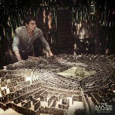 Saga Maze Runner, Maze Runner Trilogy, Maze Runner Thomas, Maze Runner The Scorch, Maze Runner Cast, Maze Runner Movie, Dylan O'brien, Teen Wolf, Newt Thomas