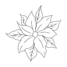 Coloring Pages of Flowers — Happies Detailed Coloring Pages, Flower Coloring Pages, Free Coloring Pages, Coloring Books, Wonderful Flowers, Flowers For You, Iris Flowers, Beautiful Flowers, Different Flowers