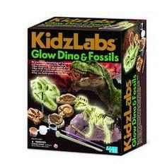 Κατασκευή φωσφορούχος δεινόσαυρος και απολιθώματα
