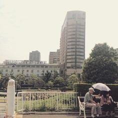 週末ふと目にした光景(^^) なんだか優しい気持ち。 #山下公園 #横浜#yokohama#japan #scene