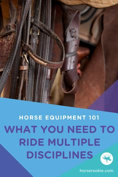 For horseback riders riding multiple disciplines, it can be difficult to figure out what equipment to purchase. Here are the top tack items you need for riding multiple disciplines. Tack, Equestrian, Westerns, Horses, Group, Board, Horseback Riding, Show Jumping, Horse