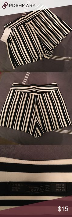 H&M Trafaluc Striped Shorts NWT Size M H&M Trafaluc Black Striped Shorts. New with tags! Left side zipper and two side pockets. H&M Shorts