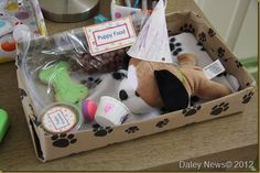 pet party for kids where they take home their own pet-favors