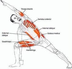 Yoga streching (Psoas Exercises Yoga)