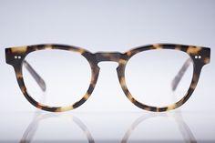 Tortoise frames