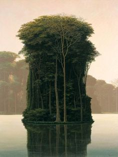 Tall tree Island reflection in the still gray and blue waters of early dawn.