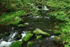 山形県のおすすめ観光スポットの高瀬峡を紹介しますよ 白糸の滝大滝蔭ノ滝などの滝があってとっても気持ちいい場所なんですよ ハイキングコースも整備されているから森林浴を楽しむのもおすすめです(    )ノ ゲンジボタルを見ることもできるから夏に行くのがいいですね tags[山形県]