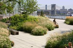 Image result for 55 water street elevated acre