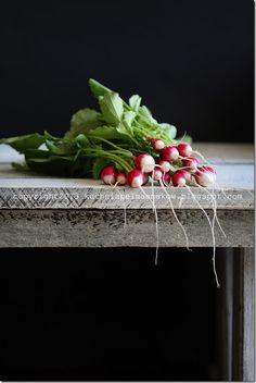sałata karbowana, rzodkiewka i zioła (6)