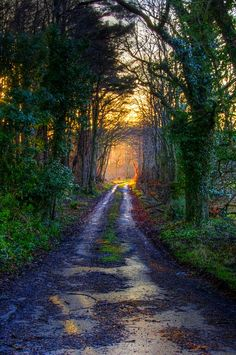 Path to the light (Maidens, Ayrshire, Scotland) by William Summers cr.c.