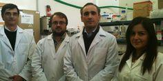 Investigadores portugueses avançam na terapia genética
