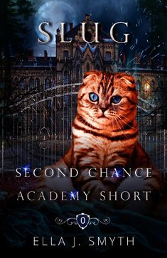 Welcome Gifts, Free Books, Short Stories, Cats, Movie Posters, Gatos, Film Poster, Cat, Kitty
