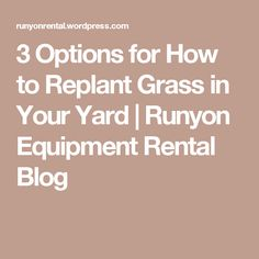 3 Options for How to Replant Grass in Your Yard | Runyon Equipment Rental Blog