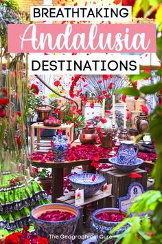 Planning a vacation in dreamy southern Spain? This Spain travel guide gives you the perfect 10 day road trip itinerary for Andalusia. It takes you from Seville to Granada, two of the most beautiful cities in Spain. En route, you'll visit all of the must see sites, historic landmarks, and must visit destinations in southern Spain -- towering cathedrals, Moorish palaces, UNESCO sites, and the most beautiful towns and white pueblo villages. Spain Itneraries | Best Things To Do and See in Spain