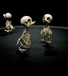 Animatus Installation - Animatus est le nom de cette série d'installations pensée par l'artiste coréen Hyungkoo Lee. Basé à Séoul, ce dernier créé de faux squelettes en résine en reprenant avec fantaisie des animaux de cartoons. Un résultant impressionnant